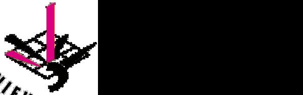 Ingenieurteam Stamm AG Luzern Logo